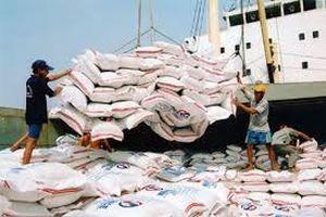 Thị trường thuận lợi, xuất khẩu gạo tăng đột biến