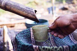 Kỳ bí loại rượu mang tên 'lộc rừng' của người Dao ở Cao Bằng
