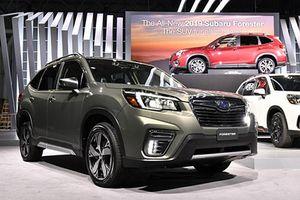 Subaru Forester 2019 có gì để 'đấu' Honda CR-V và Toyota RAV4