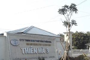 Tạm hoãn phiên tòa xét xử đại gia thủy sản Tòng 'Thiên mã'