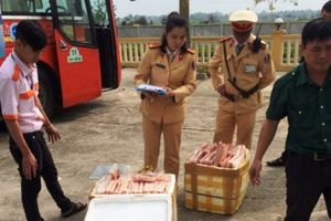 'Tuýt còi' sản phẩm động vật ôi thiu trên đường ra Hà Nội tiêu thụ