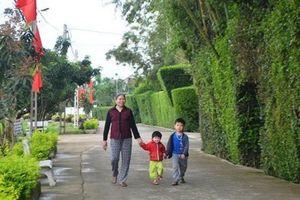 'Ngất ngây' trước những miền quê nông thôn mới Hà Tĩnh