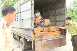 Cảnh sát Giao thông Lào Cai bắt giữ gần 2 mét khối gỗ pơ-mu lậu