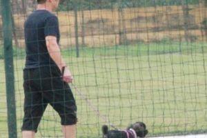 HLV Park Hang Seo dắt thú cưng xem U19 Việt Nam luyện công