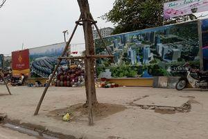 Xử lý tình trạng 'tự mọc' chợ hoa, kho đá ở dự án Starlake