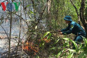 Vụ cháy lớn trong rừng Tà Cú cơ bản được khống chế