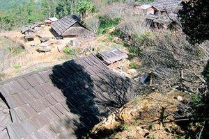 Lạ kỳ ngôi làng hàng trăm nóc nhà bằng gỗ quý tại Sơn La