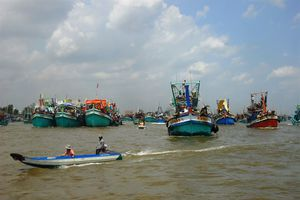 Chuẩn bị kỹ đón đoàn công tác EU sang Việt Nam về vấn đề IUU