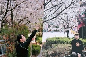 Sự thật đằng sau hình ảnh Chi Pu - Gil Lê hội ngộ ở Hàn Quốc hậu tin đồn rạn nứt