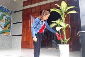Bình Định: Niềm vui khi an cư, lạc nghiệp tại Khu tái định cư Diêu Quang