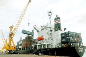 ADB: Kim ngạch xuất nhập khẩu gấp 1,85 lần GDP, Việt Nam sẽ chịu tác động nếu có cuộc chiến thương mại Mỹ - Trung