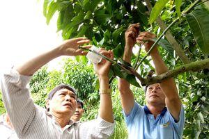Nông dân hứng khởi học nghề nông