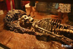 Người dân đổ xô đi xem báu vật xương người