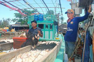 'Cướp biển' mới ở Cà Mau