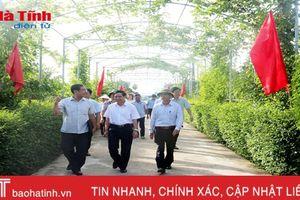 Nhiều sự kiện nổi bật về nông thôn mới diễn ra tại Hà Tĩnh cuối tuần này