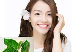 Làm trắng răng, khử mùi hôi hiệu quả chỉ với loại lá rẻ tiền bán đầy chợ