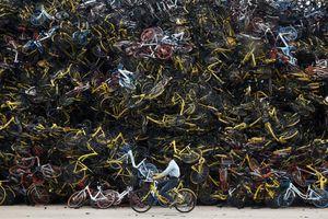 'Nghĩa địa xe đạp' cao như núi ở Trung Quốc vào top ảnh tuần