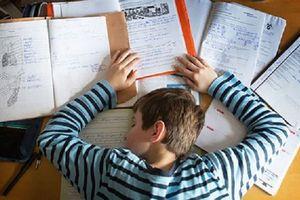 Phụ huynh không nên tạo áp lực học tập với con