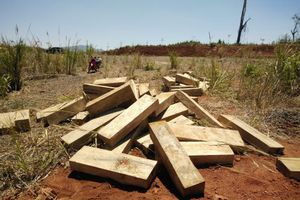 Kon Tum: Phát hiện số lượng lớn gỗ không rõ nguồn gốc sát chốt kiểm lâm của Ban quản lý rừng phòng hộ