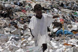 Các nhà khoa học vô tình chế được enzyme có thể phân hủy nhựa