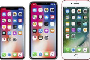 Samsung bắt đầu sản xuất màn hình iPhone X Plus
