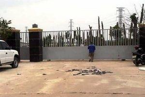 Quảng Bình: Dân bức xúc vì trang trại trâu, bò gây ô nhiễm