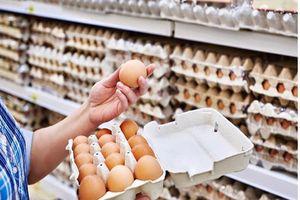 Vi khuẩn salmonella xâm nhập vào quả trứng như thế nào?
