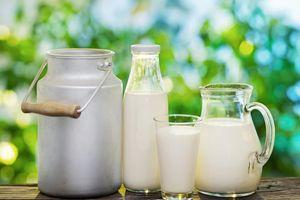 Những điều doanh nghiệp Việt cần đặc biệt chú ý khi xuất khẩu sữa sang Thái Lan