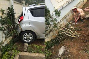 Sơn La: Giáo viên lùi xe trong sân trường, 1 học sinh tử vong
