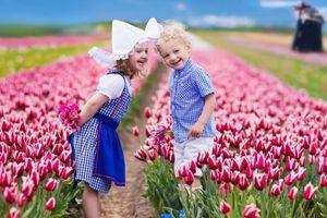 Nao lòng trước muôn hoa đua sắc của mùa xuân châu Âu
