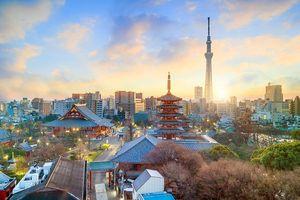 Đi đâu, làm gì nếu chỉ có 24 tiếng ở Tokyo