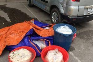 Tin VSATTP: Nhiều vụ vận chuyển thực phẩm bẩn bị bắt