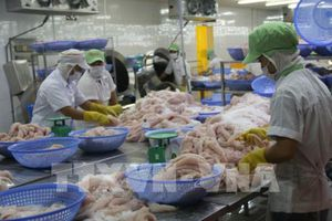 Công ty cổ phần Gò Đàng đặt mục tiêu xuất khẩu thủy sản 80 triệu USD