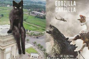Cười nghiêng ngả với bộ ảnh dự đoán tương lai khi mèo xâm chiếm cả Trái Đất