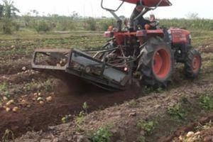 2 nông dân sáng chế máy thu hoạch khoai, 'nhoáng' cái là xong 1 sào