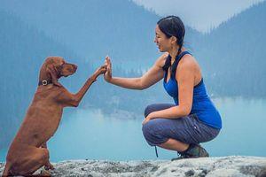 Ghen tị với chú chó tuần nào cũng được đi du lịch, chụp ảnh 'chất lừ'