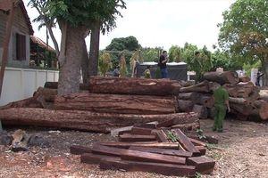 Bộ Công an vây bắt một vụ khai thác gỗ lậu