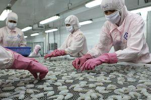 Xuất khẩu tôm: Tham vọng cán đích 4,8 tỷ USD