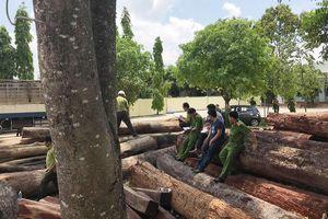 Bắt vụ phá rừng quy mô lớn tại Vườn quốc gia Yok Đôn