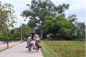 6 địa điểm du lịch quanh Hà Nội giá rẻ bạn nên đến một lần