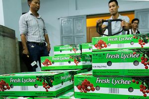 4 tháng xuất khẩu nông lâm sản đạt 12,3 tỉ USD