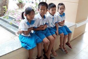 Vụ ngộ độc sau khi uống sữa Nutifood: Sau 2 tháng, nhiều học sinh vẫn đau bụng, nôn ói
