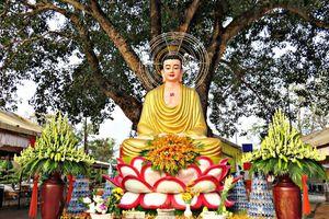 ĐỘC ĐÁO ngôi chùa cổ 100 TUỔI Thiền Lâm – Gò Kén ở Tây Ninh