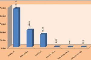 Ấn Độ đã có hơn 200 triệu thuê bao 4G