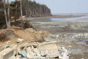 Trà Vinh: Cần di dời gần 700 hộ dân tại các vùng có nguy cơ sạt lở