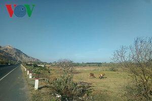 Khánh Hòa sẽ tạm dừng chuyển nhượng đất tại Bắc Vân Phong