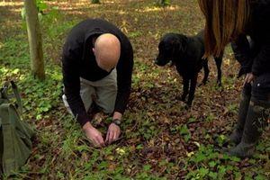 Hành trình săn lùng 'kim cương đen' đắt đỏ nhất thế giới
