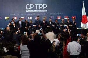 Việt Nam cùng 10 nước ký kết CPTPP