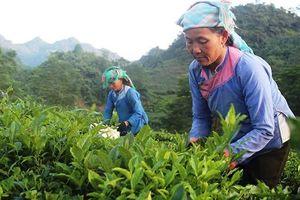 Lai Châu đẩy mạnh xây dựng nông thôn mới