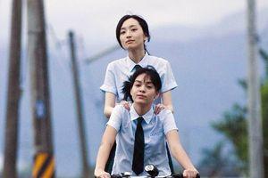 7 bộ phim về tình yêu nữ giới hay nhất màn ảnh Hoa ngữ